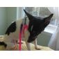 Algodão colorido Dogs Collar Leash Traction
