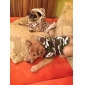 Simple Style Leopard Fleeces Warm Hoodies for Dogs (XS-L)