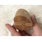 Wooden IQ Brain Teasr Heart Lock IQ Puzzle Magic Cube