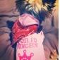 motif princesse spolied capuche pour les chiens (rose, xs, M, L)