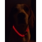9Protecollar - Adjustable Night Safety Double-Sided LED Dog Collar (Assorted Colors)