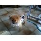 Собаки Футболка Белый Одежда для собак Весна/осень Буквы и цифры