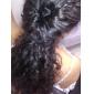 magia peinado del pelo del perno de tracción (color al azar)