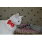 Cat / Dog Bandanas & Hats Red Dog Clothes Summer / Spring/Fall Bowknot Cute