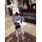 Собаки Толстовки Комбинезоны Красный серый Одежда для собак Зима Весна/осень Джинсы ковбой Мода