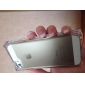 Ice Cube Design Transparent Back Case for iPhone 5/5S(Assorted Color)