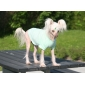 Lovely Strips Pattern T-shirt for Pets Dogs (Assorted Sizes)