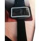 brazalete deportivo para el iphone 5/5s (colores surtidos)