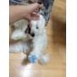 Коты / Собаки Ботинки и сапоги Красный / Синий / Желтый Лето Полиуретановая кожаСобака Обувь