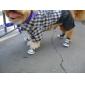 παπούτσια στυλ τζιν για σκύλους (XS-XL, διάφορα χρώματα)