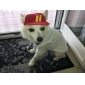 Lovely Sports Stlye Hat for Pets Dogs (Assorted Colors, Sizes)