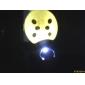 Ladybird Estilo de luz blanca LED llavero (color al azar)