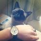 Women's Cat Face Design Casual PU Band Analog Quartz Wrist Watch(Black)