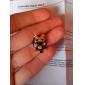 Brincos Curtos Liga imitação de diamante Formato Animal Corujas Jóias Diário