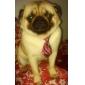 Gatos / Cães Gravata/Gravata Borboleta Vermelho Roupas para Cães Primavera/Outono Casamento