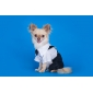 PethingTM Smart Casual Style Shirt and Trousers for Dogs (XS-XL)