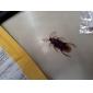 realistiske gummi kakerlakker