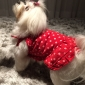 pethingtm fuld spot mønster slank seler kjoler til hunde