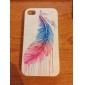 Cas Motif de plume de l'huile colorée vive Transparent Frame pour iPhone 4/4S