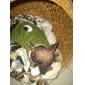 Собаки Костюмы Комбинезоны Синий Одежда для собак Зима Весна/осень Мультфильмы Милые Косплей