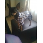 Plaid Dog Shirt with Denim Style Jeans (XS-XL)