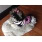 사랑스러운 줄무늬 애완 동물 개를위한 패턴 따뜻한 스웨터 (다양한 크기)를 검사