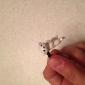 Labrador Dog Shaped 3.5mm Earphone Jack Anti-dust Plug for iPhone , iPad , Samsung & Others Smart Phone