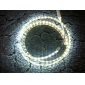 2M 20W 5050SMD 1400LM 6000K Cool White Light LED Strip Light (220V)