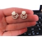 OL elegant pearl earrings earrings rose flower earrings female (random color)