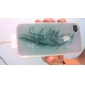Feather Pattern Fluorescence after Sunniness Hard Back Case for iPhone 4/4S