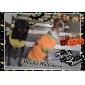 Коты / Собаки Костюмы / Футболка / Инвентарь Оранжевый Одежда для собак Лето Мультфильмы Косплей / Хэллоуин