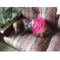 Собаки Платья Розовый Одежда для собак Лето / Весна/осень Сердца Мода