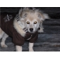 Cute Snowflake Pattern Double Face Coat with Fur Collar for Dogs (Assorted Colors,XS-XL)