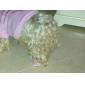 Собаки Ботинки и сапоги На каждый день Зима / Весна/осень Однотонный Красный / Синий / Розовый Полиуретановая кожа