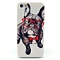 Glass Dog Animal Pattern Hard Case for iPhone 5/5S