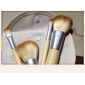 Professional Brush Set with 4Pcs Bamboo Stalk and Bag