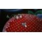여성 팬던트 목걸이 진주 목걸이 펄 합금 패션 의상 보석 보석류 제품 파티