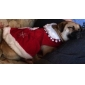 Chat / Chien Robe Rouge Vêtements pour Chien Hiver Mariage / Cosplay
