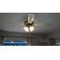 3W E26/E27 Ampoules Globe LED 12 SMD 2835 240-270LM lm Blanc Chaud Gradable AC 100-240 V