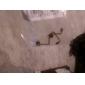 Замена ленты кабель для 3DS