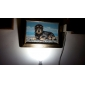 5W E26/E27 Lâmpada Redonda LED A50 15 SMD 5630 360 lm Branco Natural AC 220-240 V