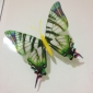 glow-in-Dunkel-Schmetterling (style Sortiment)