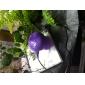 무선 블루투스 스피커 2.1 CH 휴대용 / 야외 / 방수 / 미니