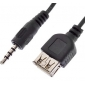 3.5mm Audio Male to USB Female Cable(0.1M)