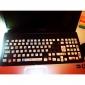 estilo animal de la etiqueta engomada del teclado del ordenador fluorescencia (PC 1 color al azar)