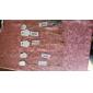 여성 팬던트 목걸이 닻 합금 패션 미니멀 스타일 유럽의 보석류 제품 파티 일상 캐쥬얼