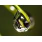 Удлинительное (макро) кольцо из 3 частей для Canon