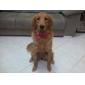 elegante verstelbare bowtie kraag ketting voor honden (willekeurige kleuren)