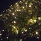 8м 60led солнечные фонари строки прекрасные струнные светильники Chritmas отделочные наружные фонари whateproof