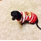 Cat Dog Sweater Dog Clothes Cute Christmas Reindeer Black Red Green Blue